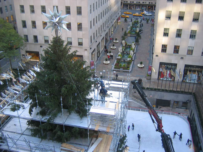 The Rockefeller Center Christmas Tree from the 7th floor of 30 Rock